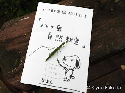 yatsugatake1709_64