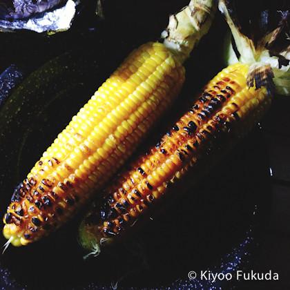 yatsugatake1709_68